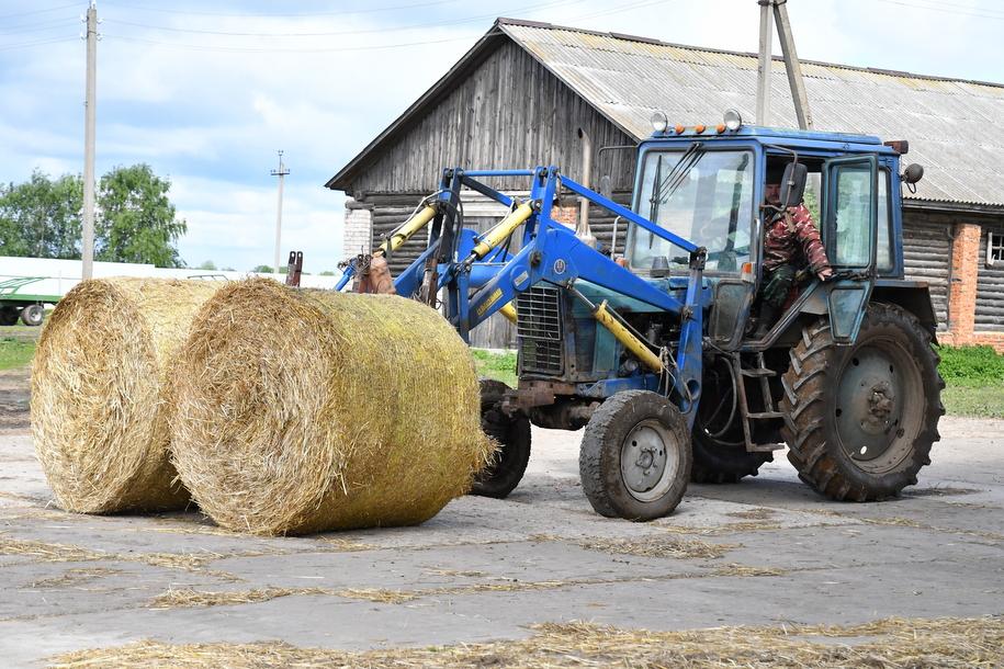 Трактор с сеном для лошадей животноводческого комплекса при растениеводческом хозяйстве Русь