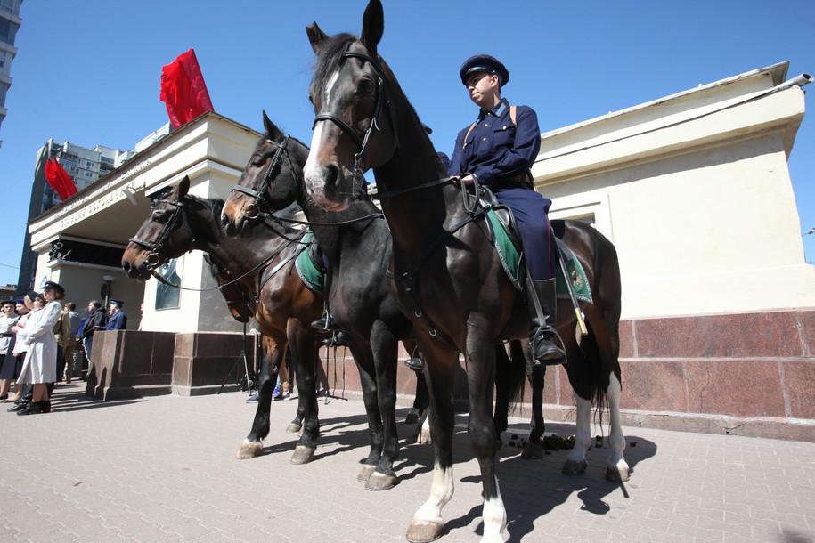 Орловские скакуны на службе полиции