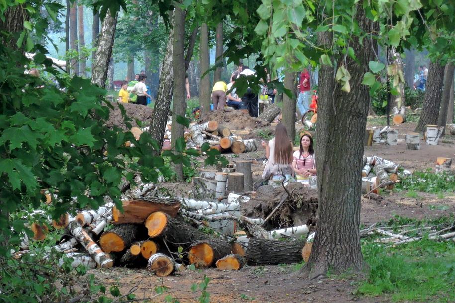 Пикник рядом с бревнами в парке в Люблино