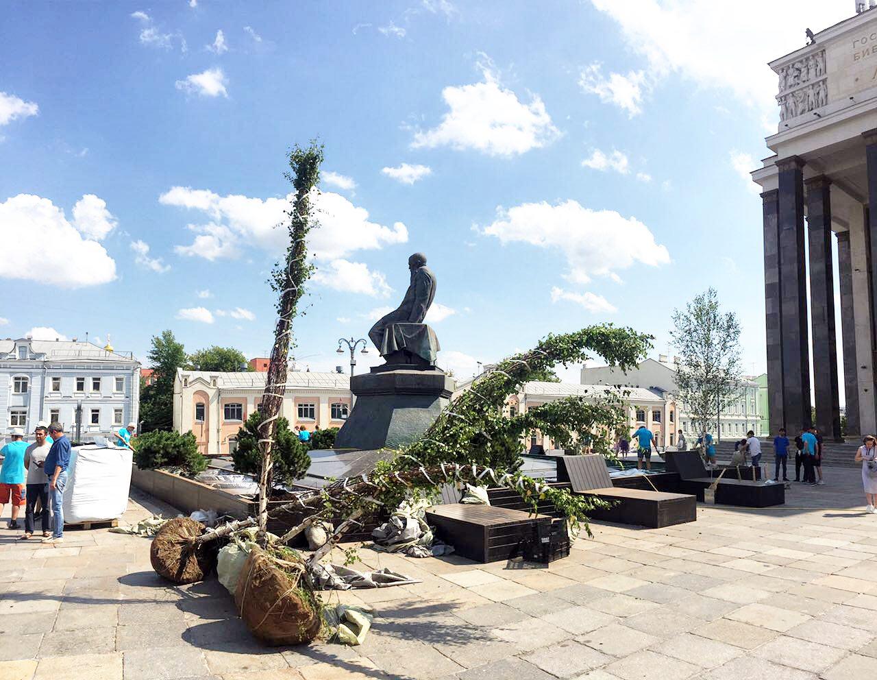 Деревья у памятника Достоевскому перед библиотекой имени Ленина