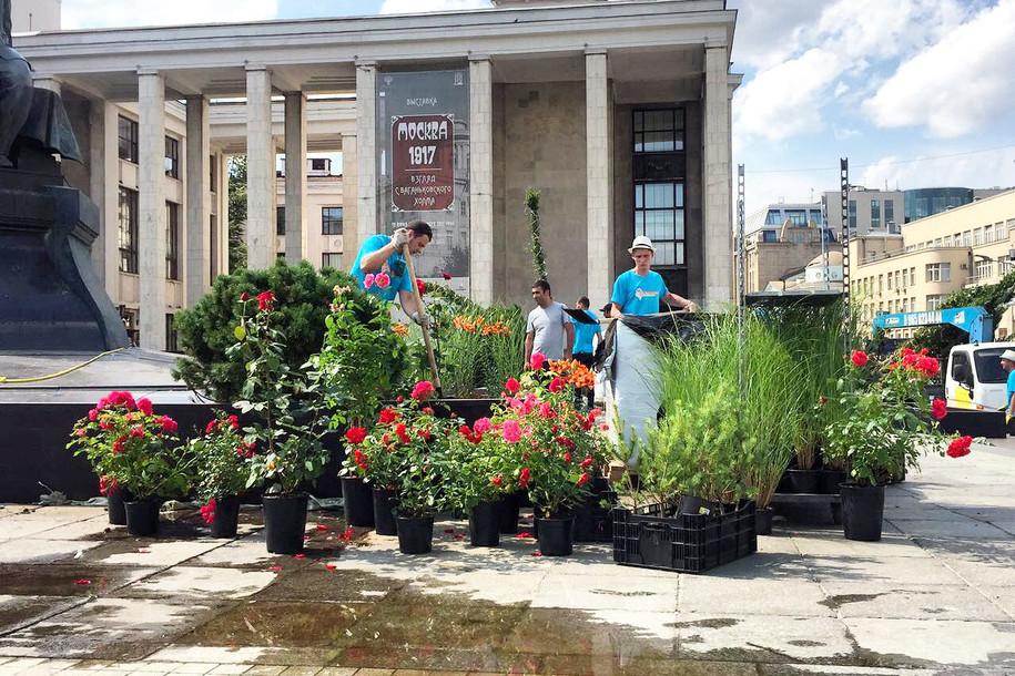 У памятника Достоевскому появится цветущий сад