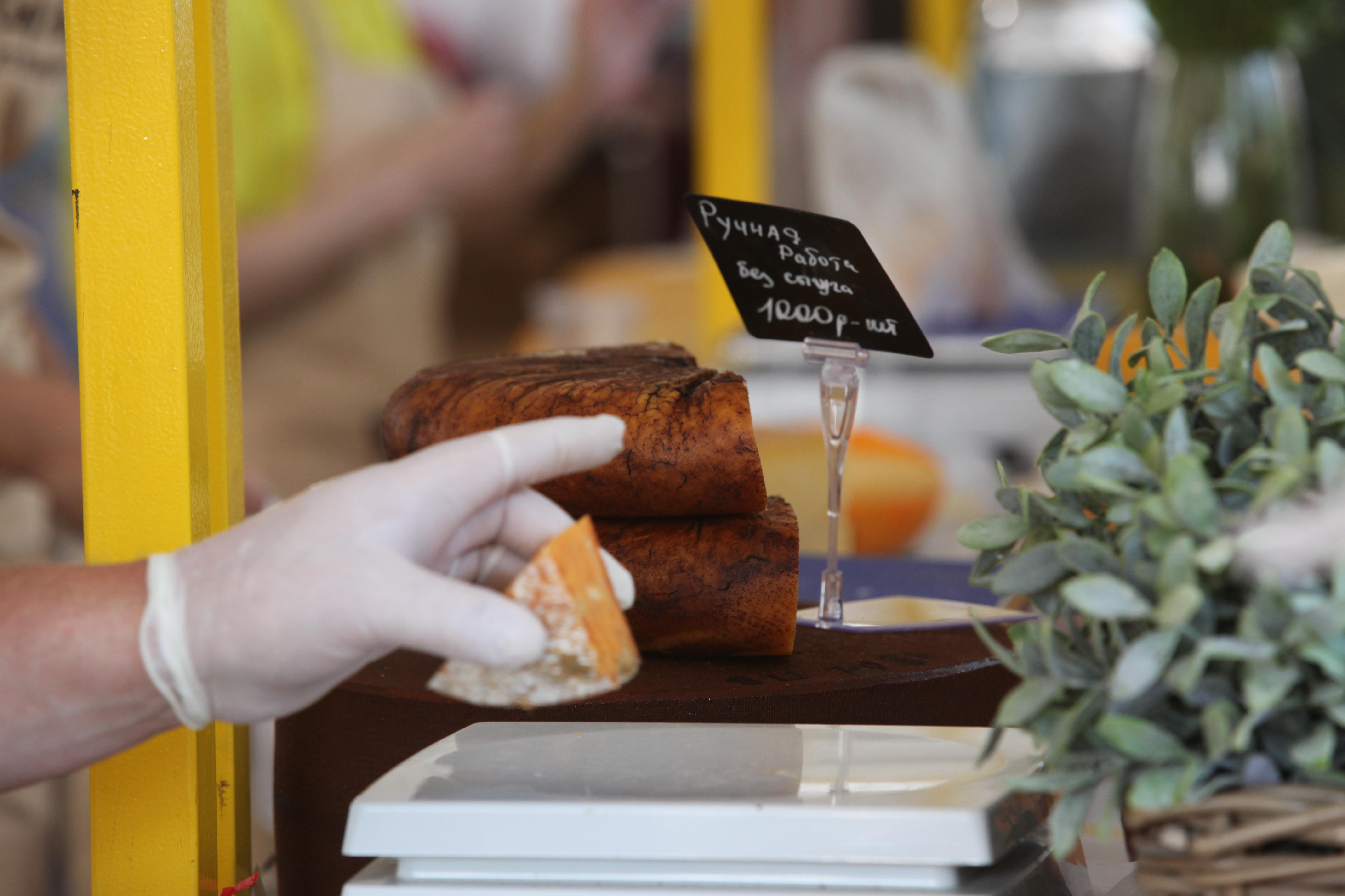 Рука в резиновой перчатке с куском сыра