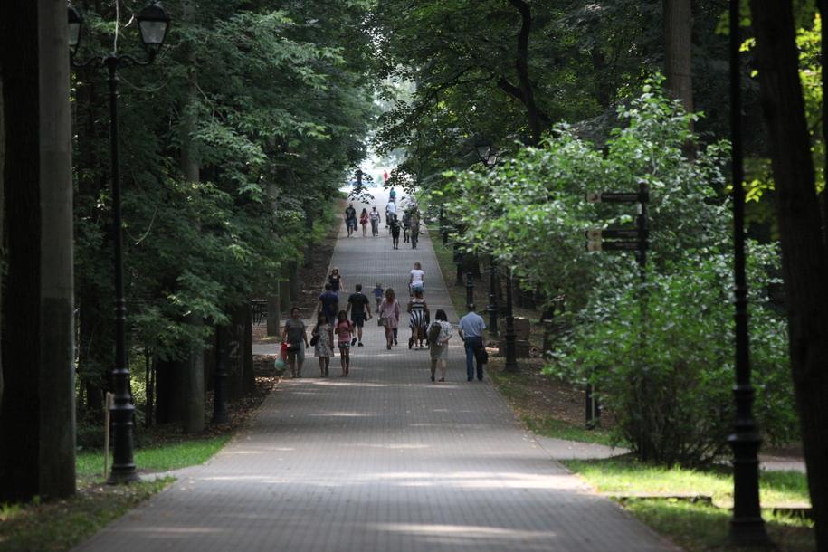 Главная аллея в парке в Филевском парке