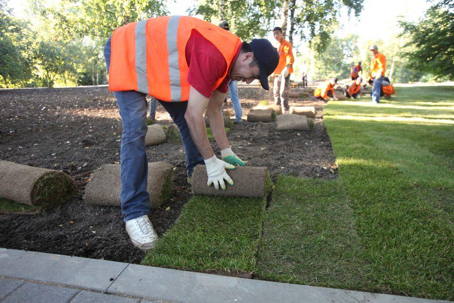 На Садовом кольце высадят более 80 тыс. растений