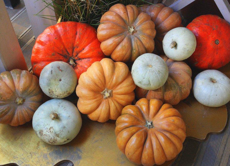 Овощи и фрукты станут дешевле на рынках в Москве