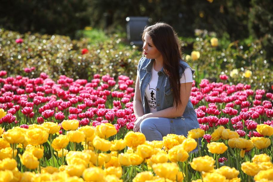 Осенью в Москве высадят 12 млн луковиц тюльпанов