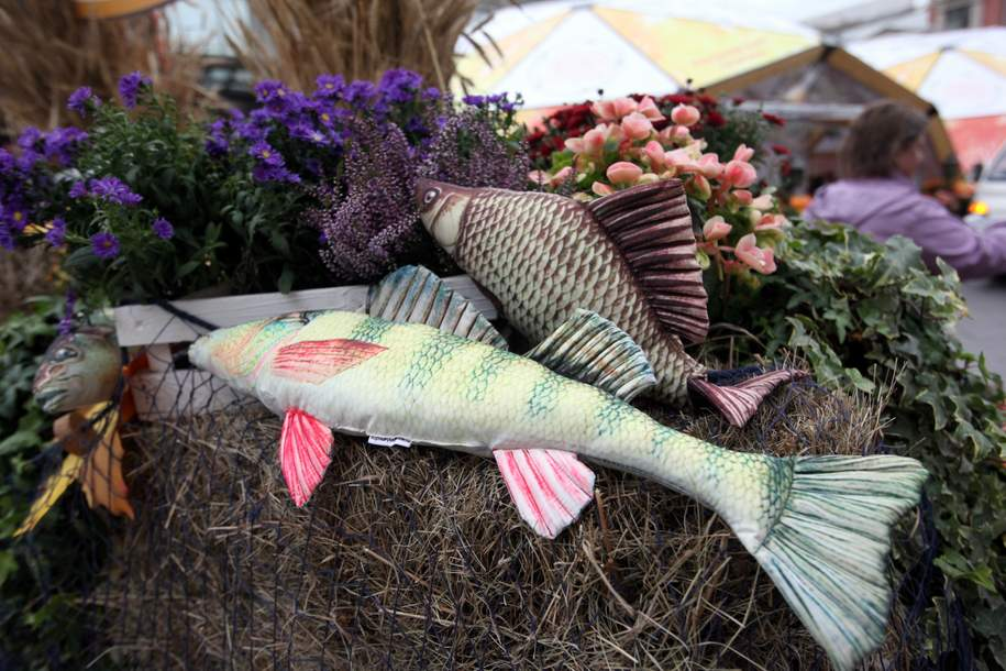 Начались рыбные дни фестиваля «Золотая осень»