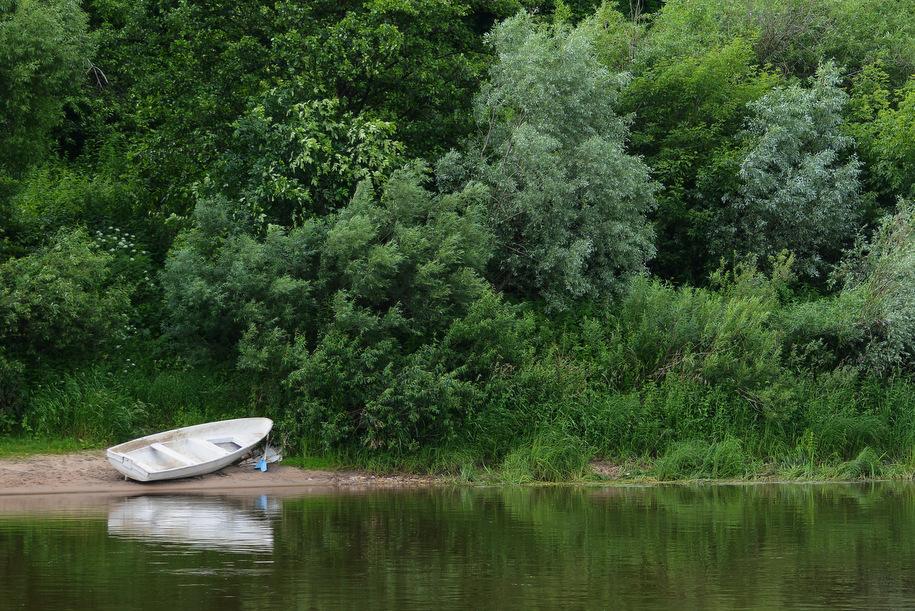Спасатели вытащили из Москвы-реки тонувшего пожилого рыбака