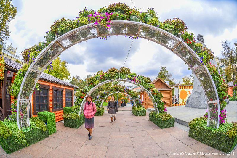 На фестиваль «Золотая осень» привезут 100 тонн тыквы