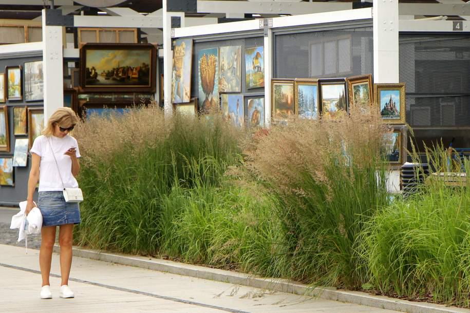 Свыше 350 тыс. многолетних растений украсят столицу в 2018 году