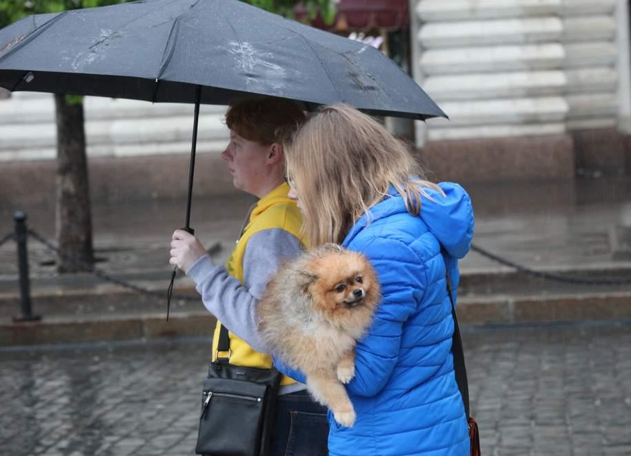 За прошедшие сутки в Москве выпало более 40% месячной нормы осадков