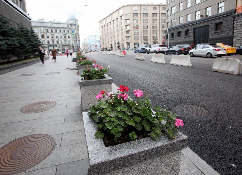 Около 140 тыс. кустарников высадили в Москве по программе «Моя улица»