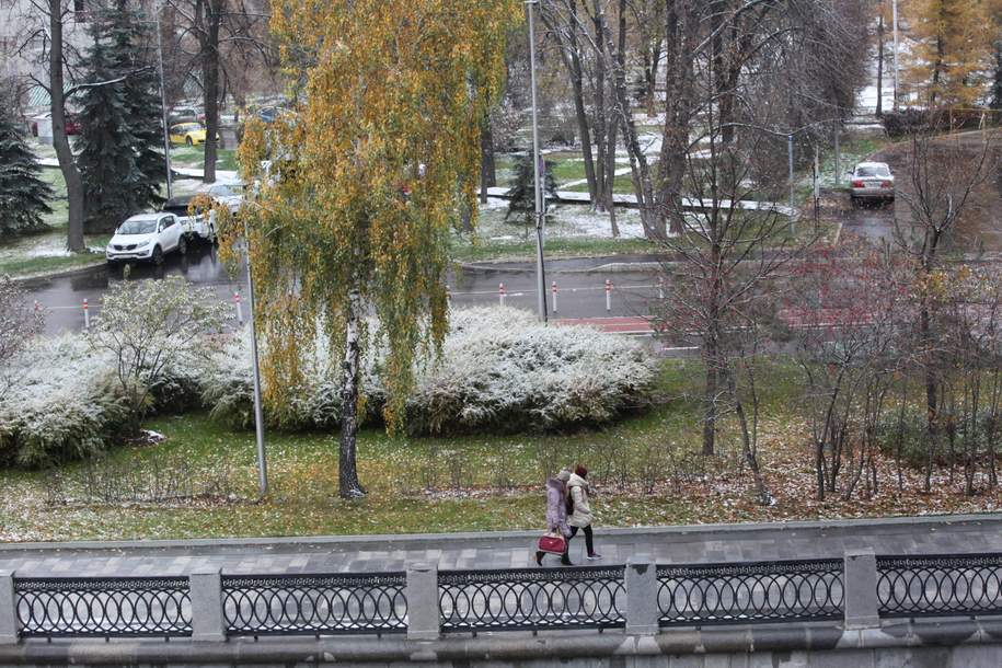 Гидрометцентр разъяснил, куда «пропал» обычный для столицы ноябрьский снег