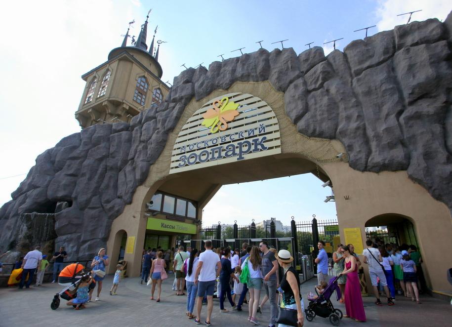 В Московском зоопарке открыли «Скалу хищных птиц»