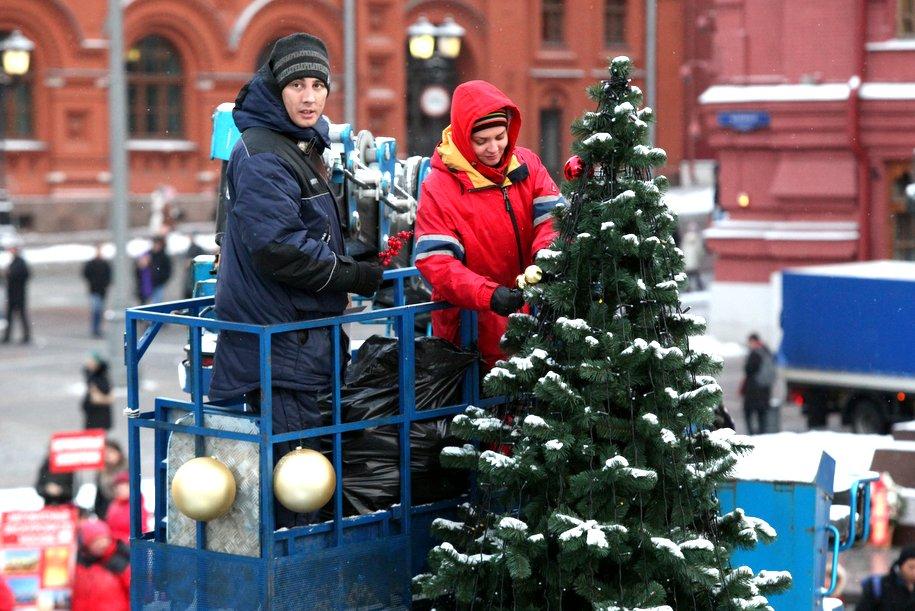 Более 1100 елей украсят площадки фестиваля «Путешествие в Рождество»