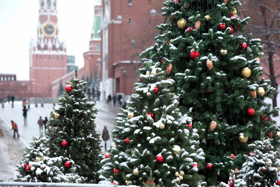 Главную ель страны доставили в Кремль
