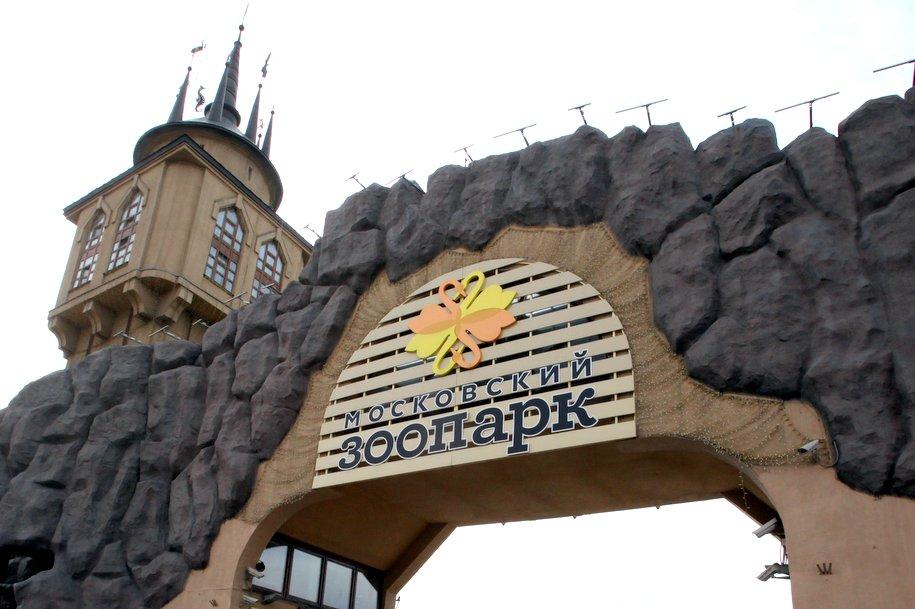 В 2019 году откроется новый вход в Московский зоопарк