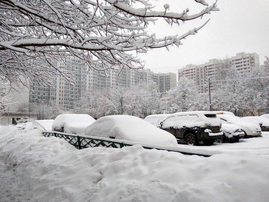 МЧС предупредило о сильных снегопадах в Центральной России