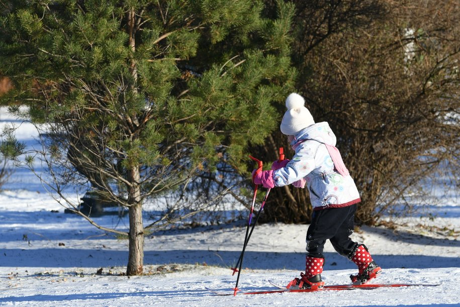 Мэр Москвы поручил подготовить к открытию катки и лыжные трассы