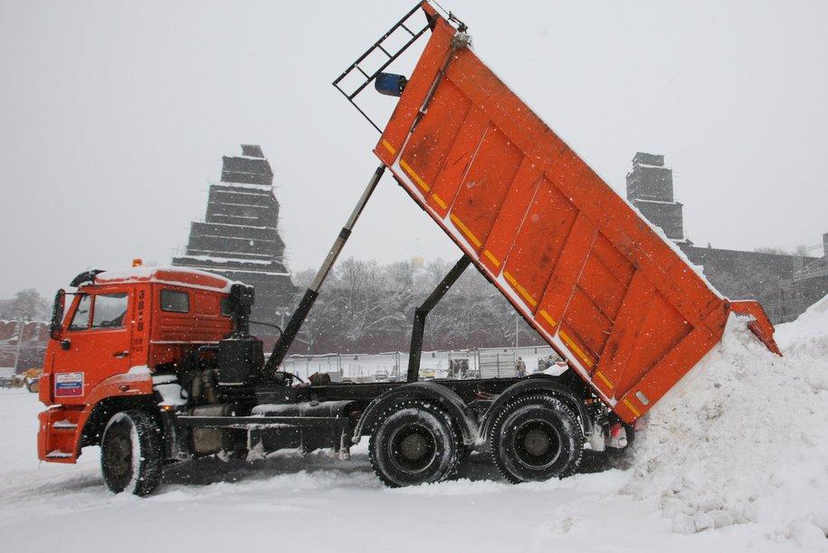 В столице России задень наавтомобили рухнули свыше 100 деревьев