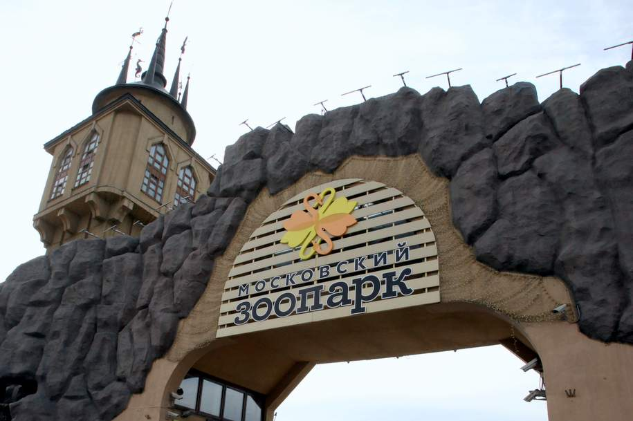 В Московском зоопарке пройдут квест, лекция и мастер-класс