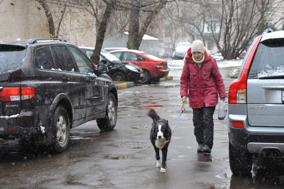 МЧС предупреждает жителей Подмосковья о снегопаде