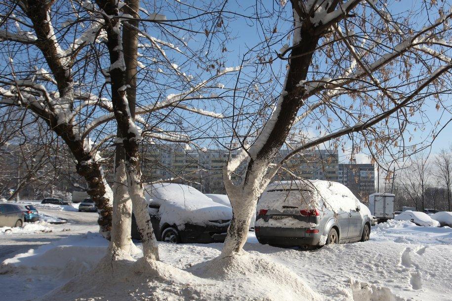 Синоптики обещают потепление к концу недели
