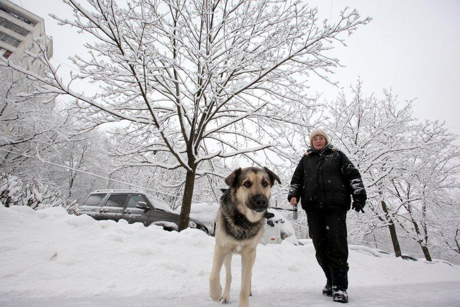 В Москве прошел сильнейший снегопад за 100 лет