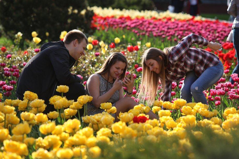 Летом столица расцветет петуниями и бегониями