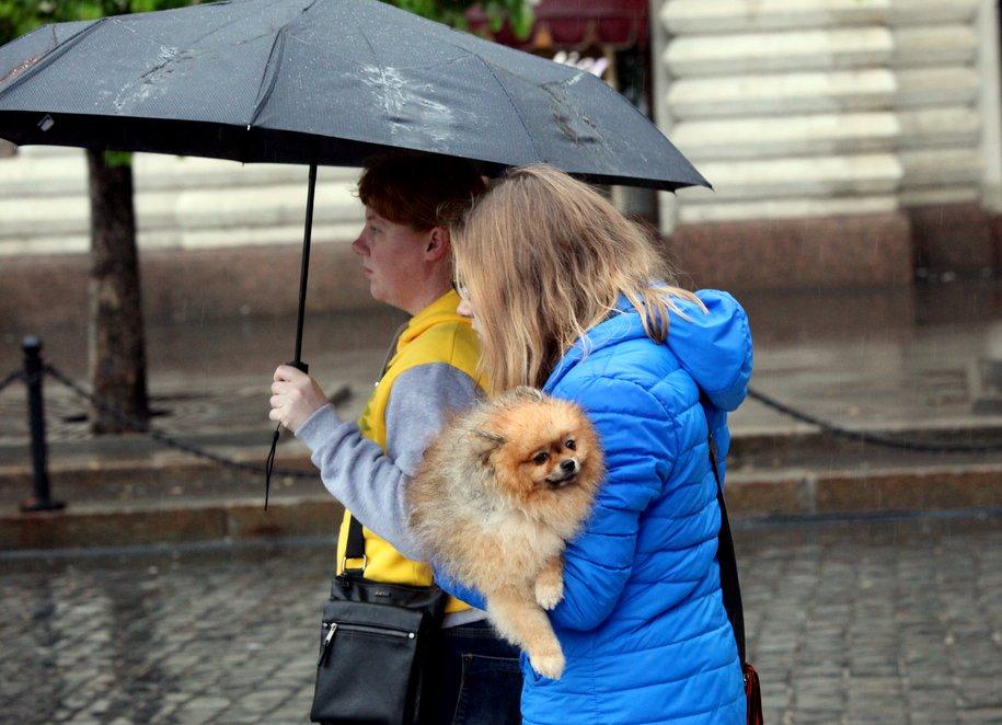 Апрель в Москве завершится на дождливой ноте
