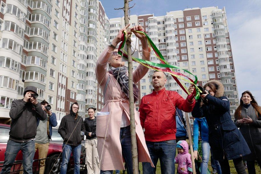 Посадить дерево — выполнено! В Новой Москве прошла акция «Семейное дерево»