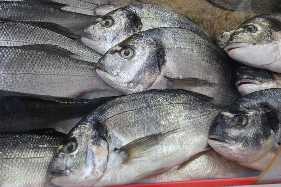 На фестивале «Рыбная неделя» будут работать более 100 торговых шале
