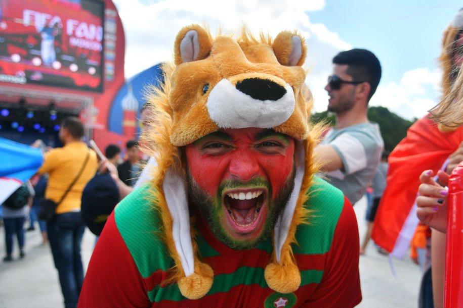 Медведь Яков Потапыч — в ТОП-7 лучших предсказателей Чемпионата мира-2018