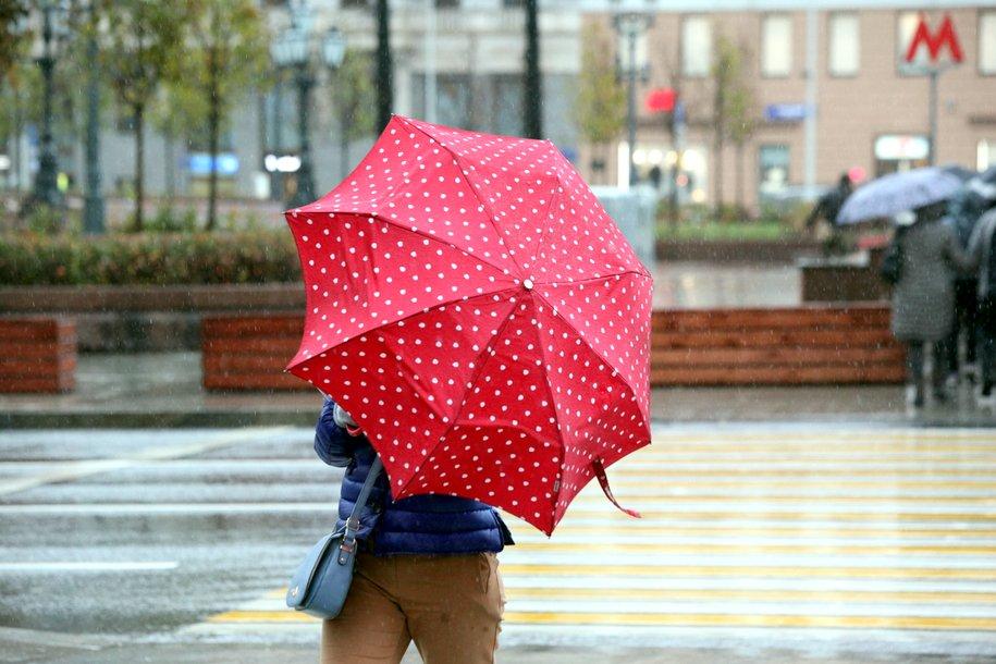 МЧС предупредило москвичей о сильном дожде и ветре вечером 20 июля
