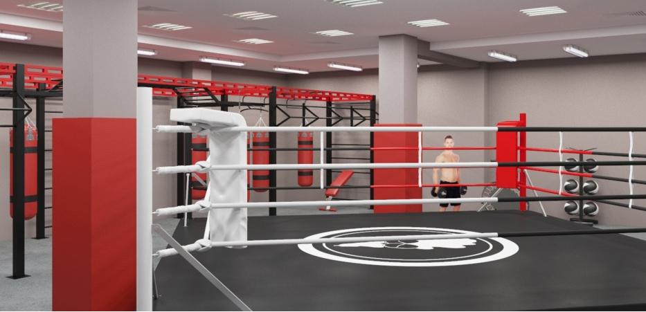 Жилье и спорткомплекс для боксеров и гимнастов построят в ТиНАО