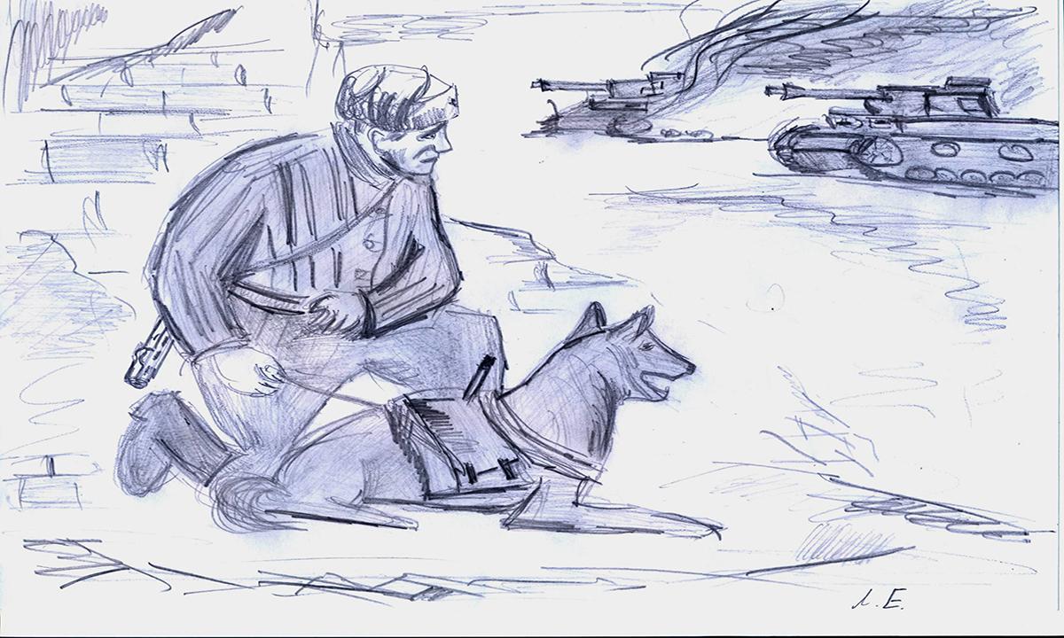 Определены лучшие работы всероссийского конкурса портретов фронтовой собаки
