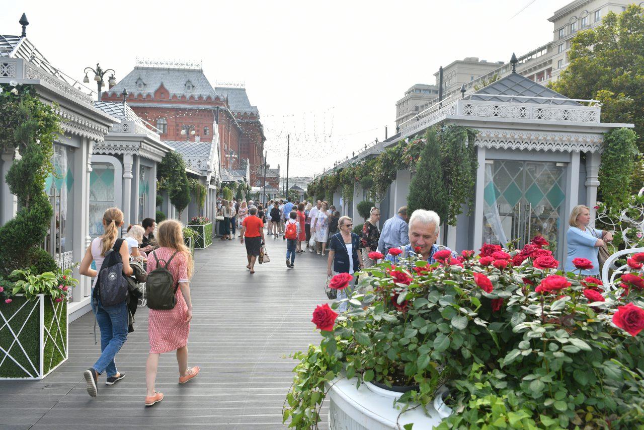 Ко Дню Города в Москве высадили порядка 700 тыс. цветов