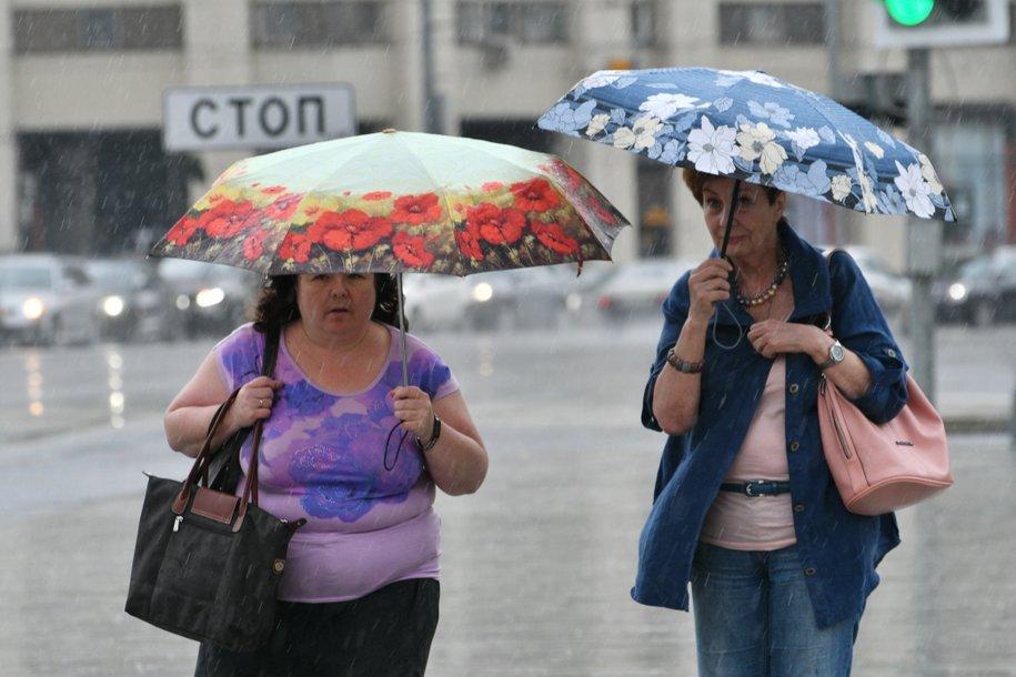 В ближайшие часы в Москве ожидается дождь с грозой
