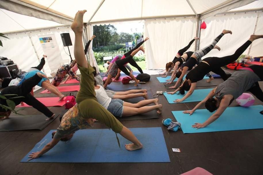 Более 45 тыс. человек посетили занятия йогой минувшим летом