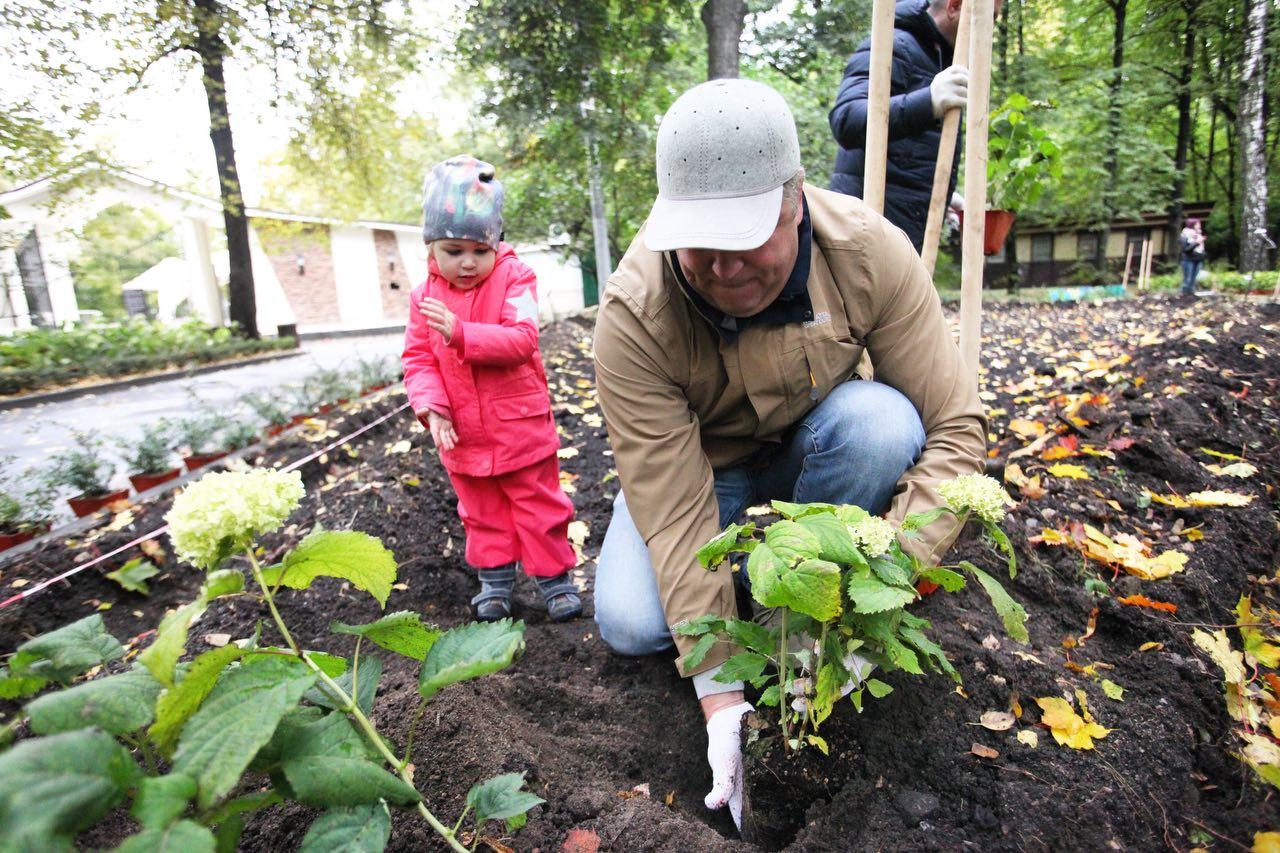 До конца осени в Восточном Измайлово высадят почти 700 деревьев