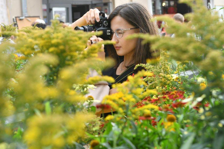 Фестиваль «Цветочный джем» планируют совместить с Днем города