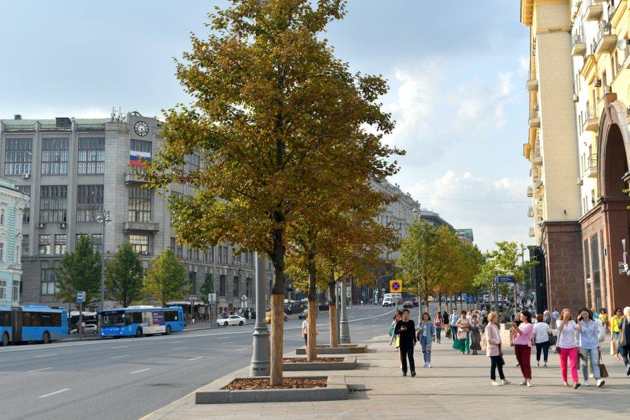 В столичном регионе объявлен «желтый» уровень опасности в понедельник, 10 сентября