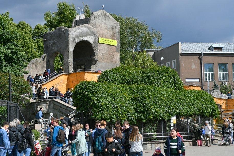 Арт-квартал планируют создать на ул. Зоологическая к 2022 году