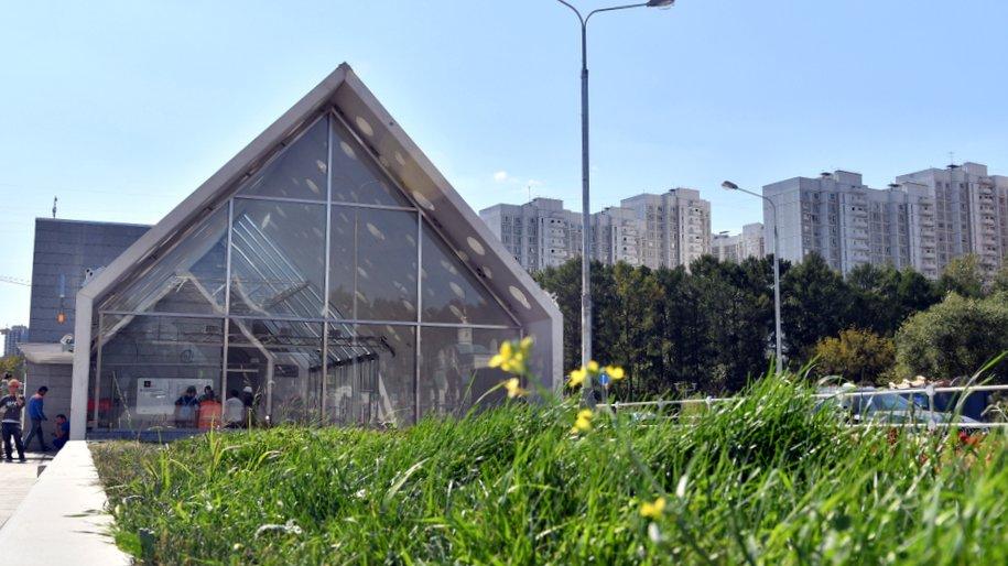 В столице объявлен «желтый» уровень опасности в воскресенье, 2 сентября