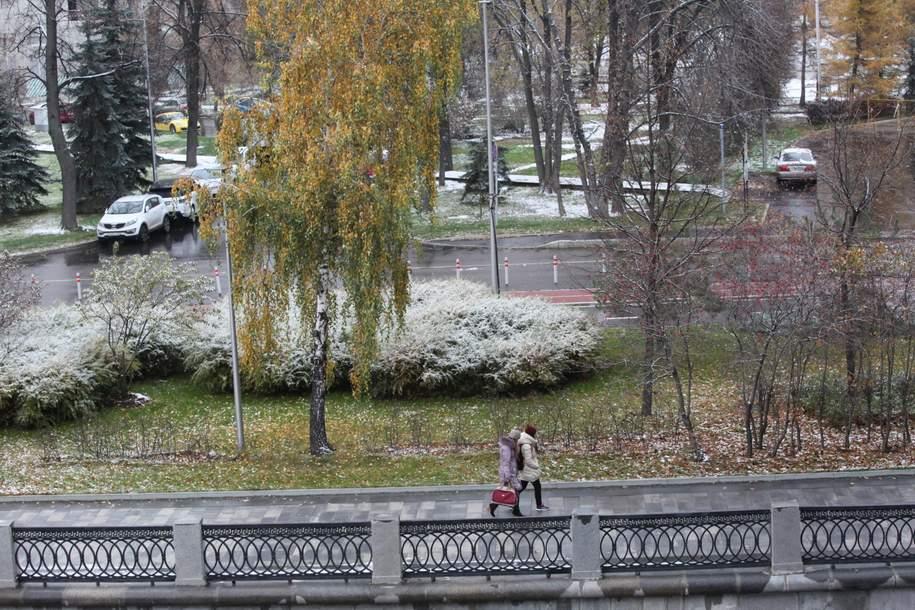 В понедельник в Москве ожидается мокрый снег с дождем