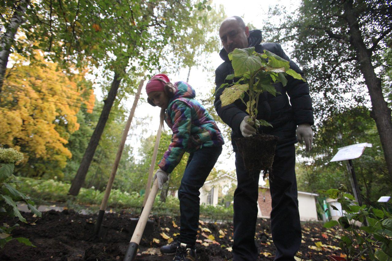 В парке в пойме реки Битцы начали высадку деревьев