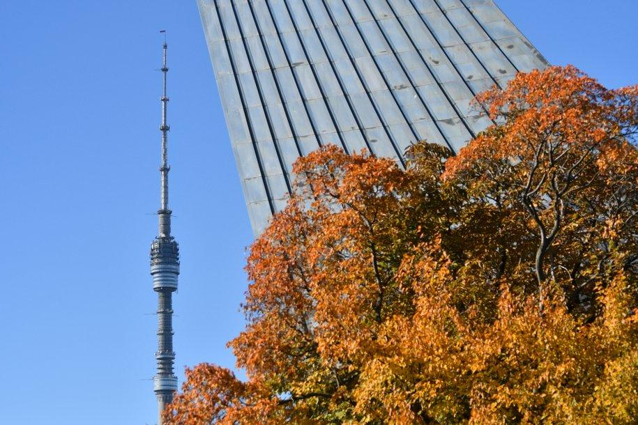 На медиафасадах Останкинской башни будет транслироваться праздничное шоу в честь ее 51-летия