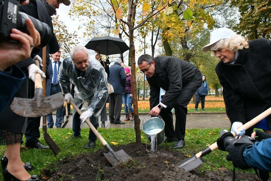 Юбилей Мосгордумы депутаты отметили высадкой деревьев