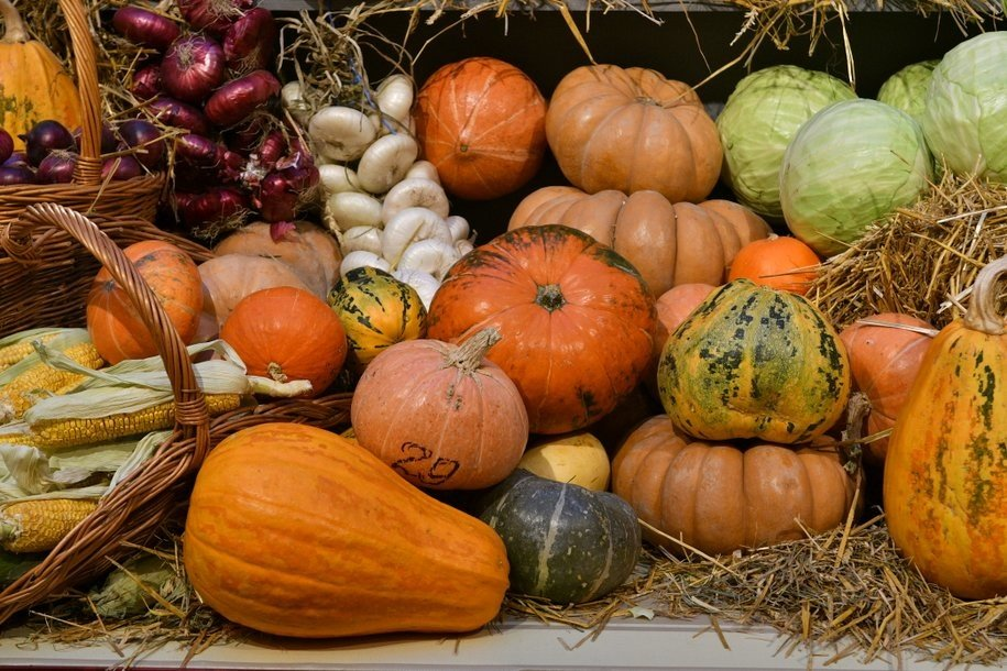 Фестиваль «Золотая осень» на четырех площадках столицы продлят до 31 октября