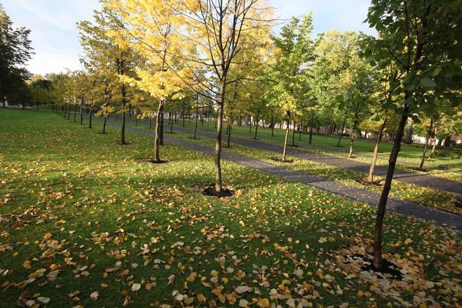 Специалисты Мосприроды обнаружили в парке «Битцевский лес» краснокнижную ласку